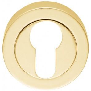 Euro Escutcheon (Concealed Fix) - Polished Brass