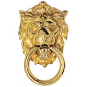 Carlisle Lion Head Door Knocker Polished Brass