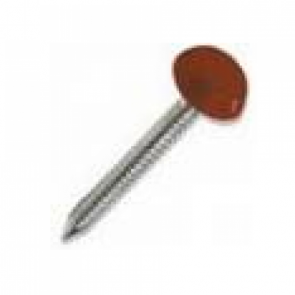 Oak Plastop Nails Small Head (7mm) - Various Sizes